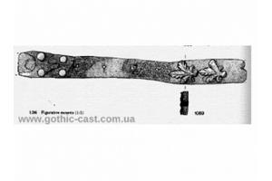 Leaf shape mount for belt 1360-1500 A.D.